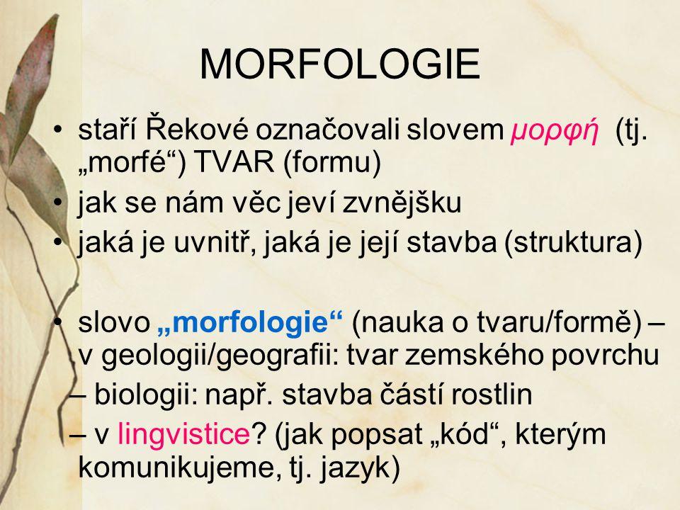 MORFOLOGIE staří Řekové označovali slovem μορφή (tj.