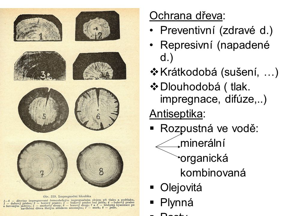 Ochrana dřeva: Preventivní (zdravé d.) Represivní (napadené d.)  Krátkodobá (sušení, …)  Dlouhodobá ( tlak. impregnace, difúze,..) Antiseptika:  Ro