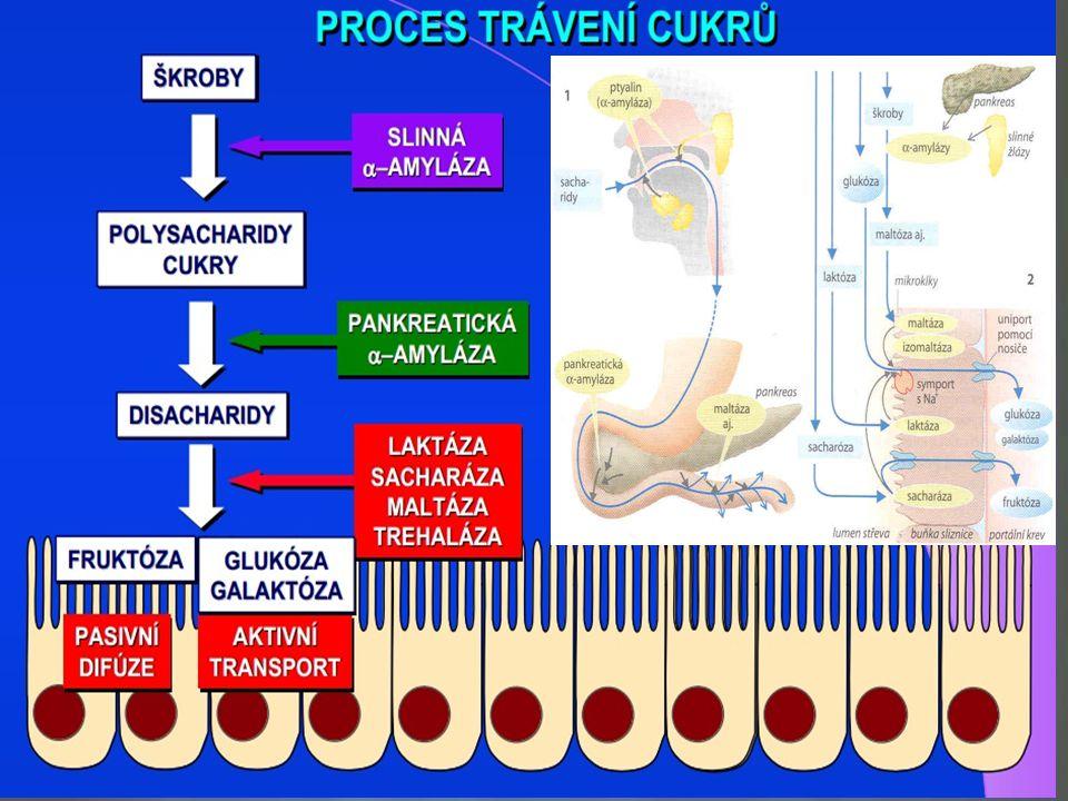 Indikace: Zavážná anemie ( Hb pod 100g/l ) Potřeba rychlé korekce anemie ( symptomatická ) Nesnášenlivost nebo nedostatečná odpověd´ na perorálně podané železo Stav po resekci žaludku a tenkého střeva Aktivní střevní choroba Parenterální substituce železa Parenterální substituce železa
