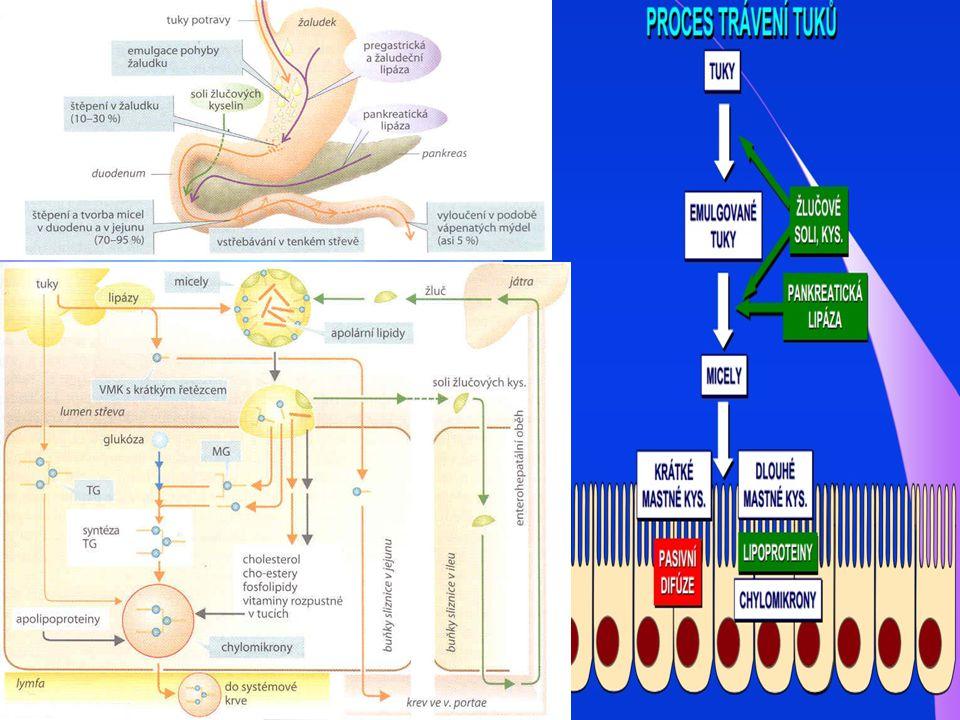 Mikromolekulární preparáty: Glukonát železitý ( Ferrlecit amp.