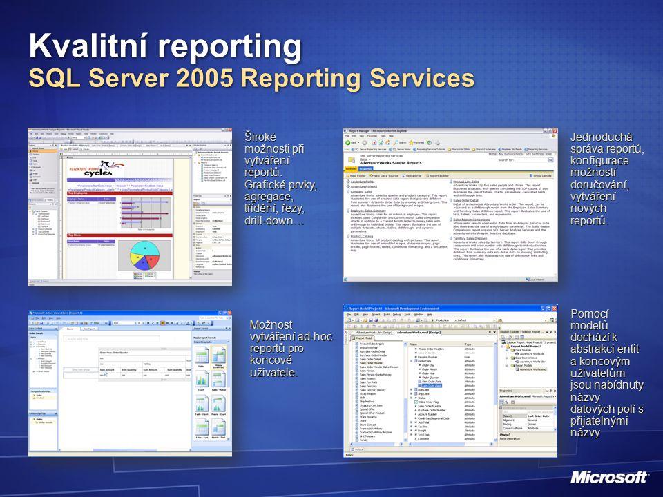 Široké možnosti při vytváření reportů.