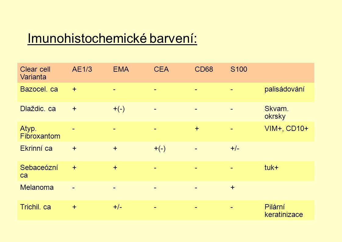 Imunohistochemické barvení: Clear cell Varianta AE1/3EMACEACD68S100 Bazocel. ca+----palisádování Dlaždic. ca++(-)---Skvam. okrsky Atyp. Fibroxantom --