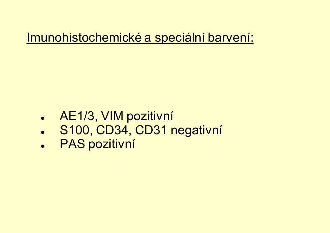 Imunohistochemické a speciální barvení: AE1/3, VIM pozitivní S100, CD34, CD31 negativní PAS pozitivní
