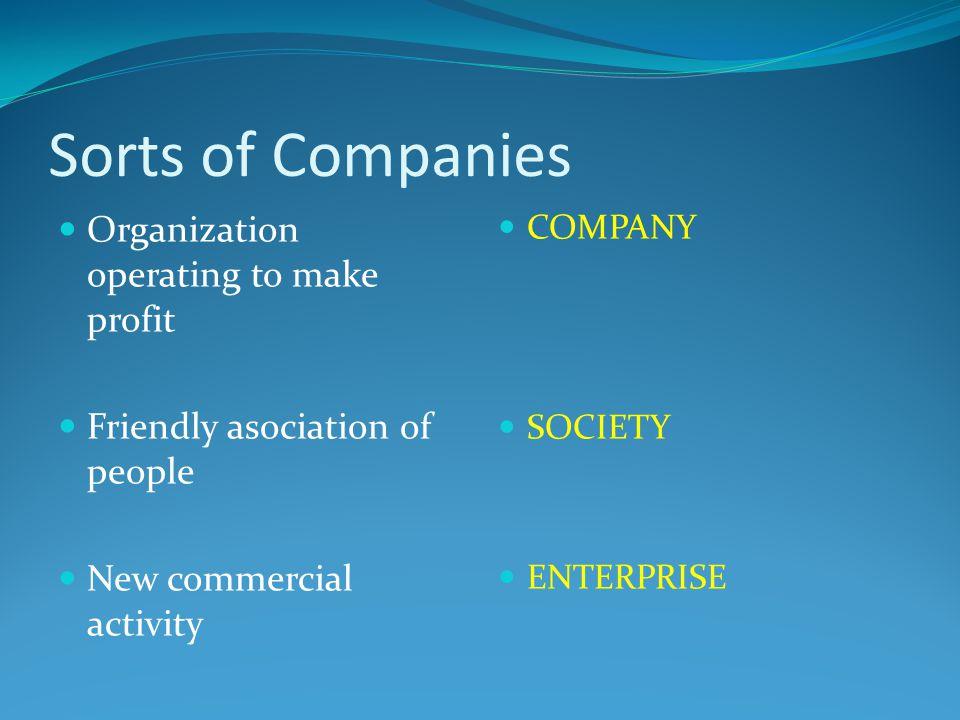 Sorts of Companies Public limited company – PLC Private limited company Sole trader Public sector Veřejná akciová společnost, a.s.