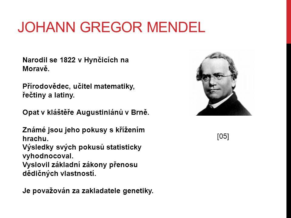 JOHANN GREGOR MENDEL Narodil se 1822 v Hynčicích na Moravě. Přírodovědec, učitel matematiky, řečtiny a latiny. Opat v kláštěře Augustiniánů v Brně. Zn