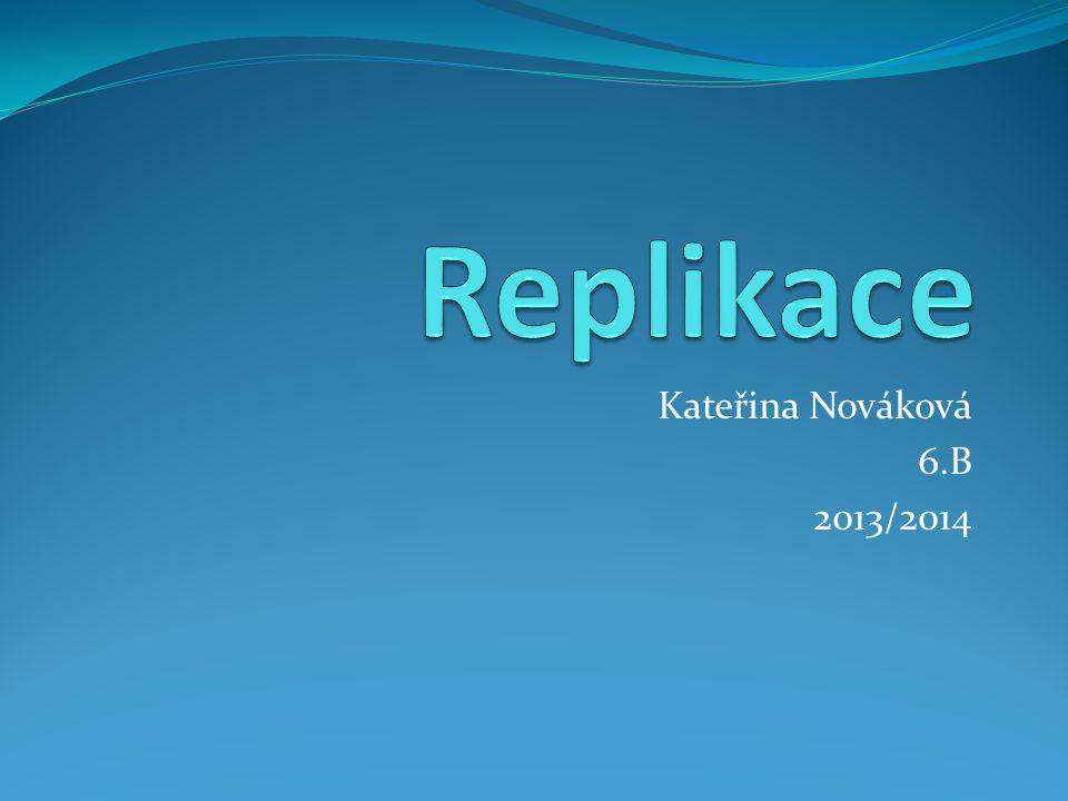 Kateřina Nováková 6.B 2013/2014
