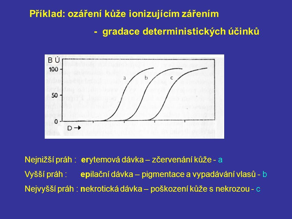 Příklad: ozáření kůže ionizujícím zářením - gradace deterministických účinků Nejnižší práh : erytemová dávka – zčervenání kůže - a Vyšší práh : epilační dávka – pigmentace a vypadávání vlasů - b Nejvyšší práh : nekrotická dávka – poškození kůže s nekrozou - c BÚ