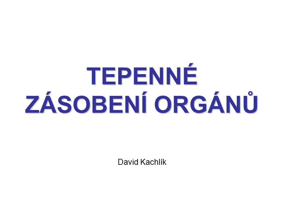 TEPENNÉ ZÁSOBENÍ ORGÁNŮ David Kachlík