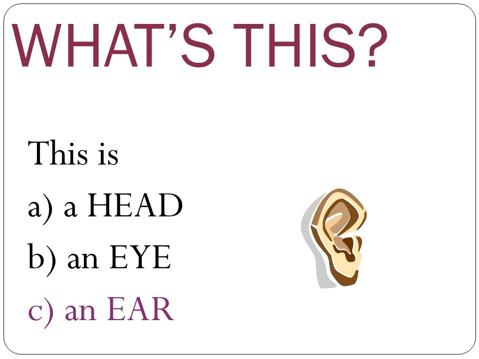 WHAT'S THIS This is a) a HEAD b) an EYE c) an EAR