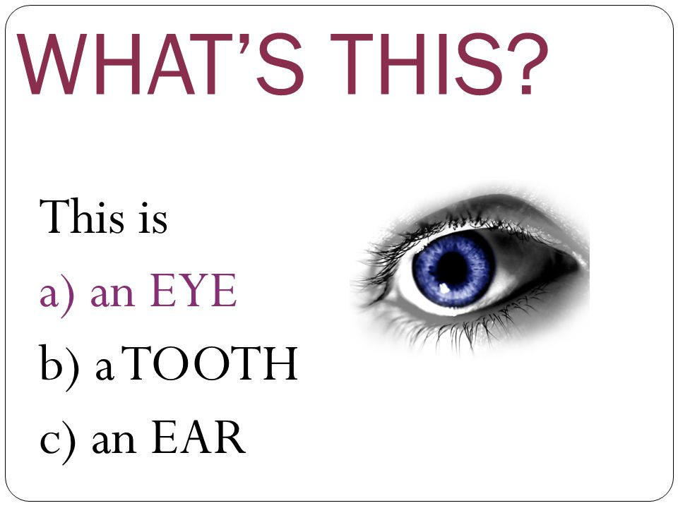 WHAT'S THIS This is a) an EYE b) a TOOTH c) an EAR