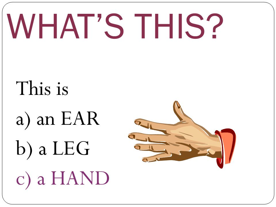 WHAT'S THIS This is a) an EAR b) a LEG c) a HAND