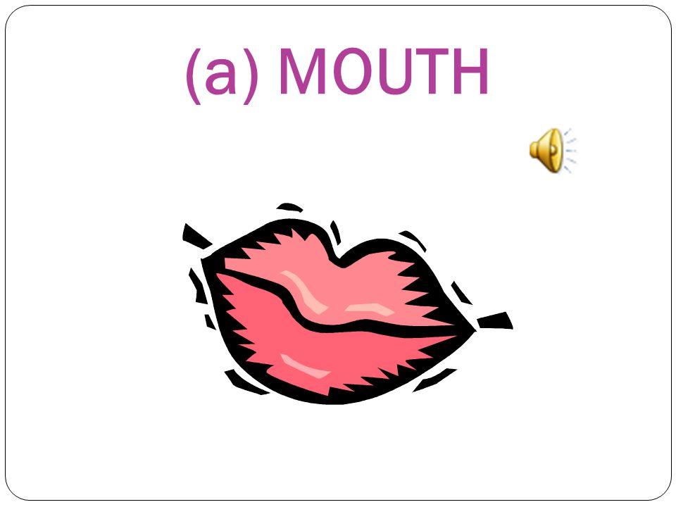 (a) MOUTH
