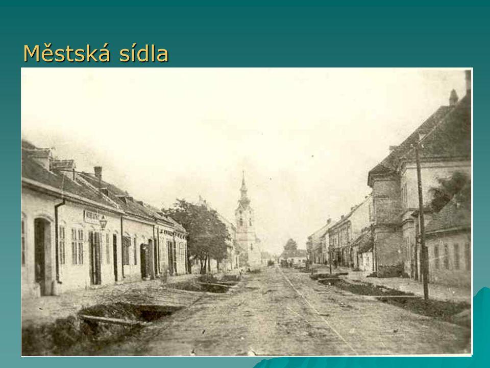 Městská sídla  V minulosti městská práva  Vznik nových měst během industrializace (Ostrava, Most, …)  Dnes město = centrum služeb (více funkcí)  M