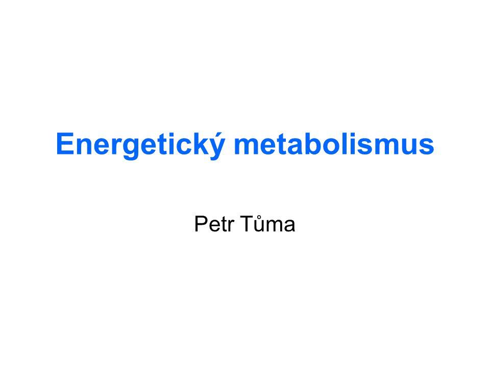 Energetický metabolismus Petr Tůma