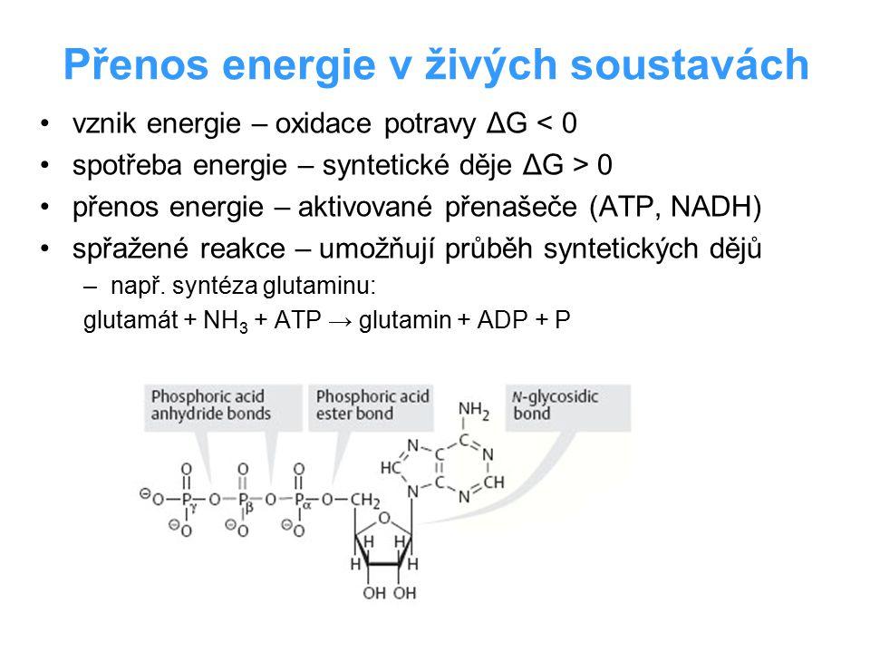 Přenos energie v živých soustavách vznik energie – oxidace potravy ΔG < 0 spotřeba energie – syntetické děje ΔG > 0 přenos energie – aktivované přenaš