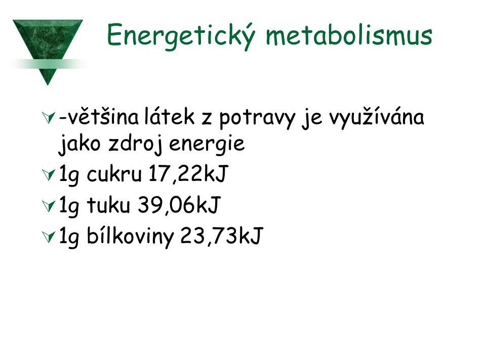 Energetický metabolismus  -většina látek z potravy je využívána jako zdroj energie  1g cukru 17,22kJ  1g tuku 39,06kJ  1g bílkoviny 23,73kJ