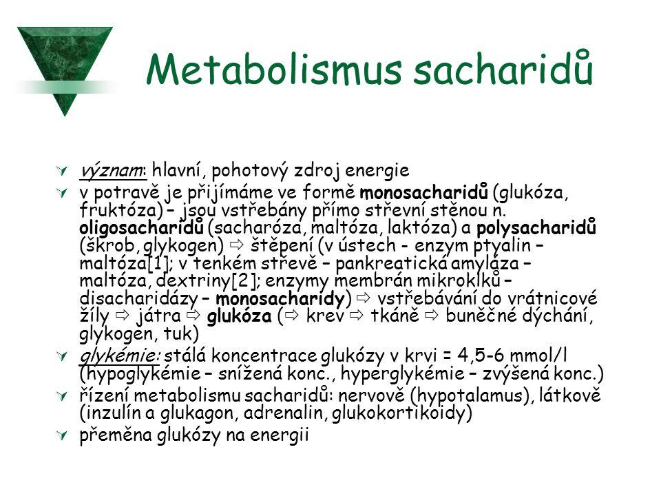 Metabolismus sacharidů  význam: hlavní, pohotový zdroj energie  v potravě je přijímáme ve formě monosacharidů (glukóza, fruktóza) – jsou vstřebány přímo střevní stěnou n.