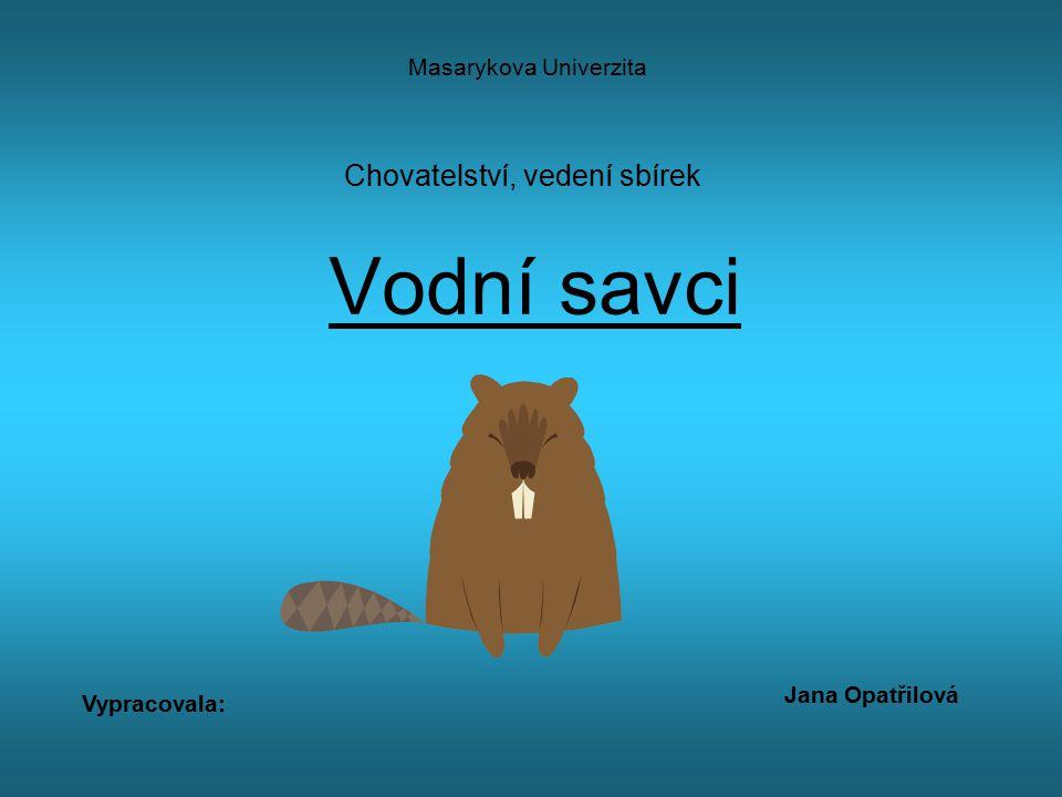 Chovatelství, vedení sbírek Vodní savci Masarykova Univerzita Jana Opatřilová Vypracovala: