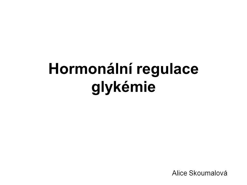 Hormonální regulace glykémie Alice Skoumalová