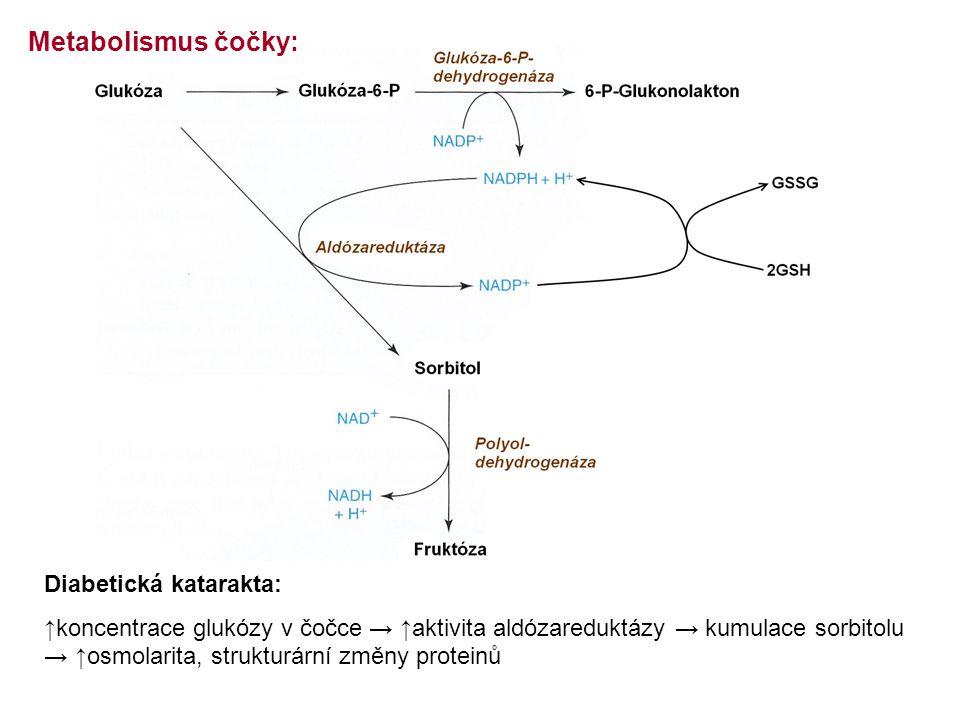 Metabolismus čočky: Diabetická katarakta: ↑koncentrace glukózy v čočce → ↑aktivita aldózareduktázy → kumulace sorbitolu → ↑osmolarita, strukturární změny proteinů