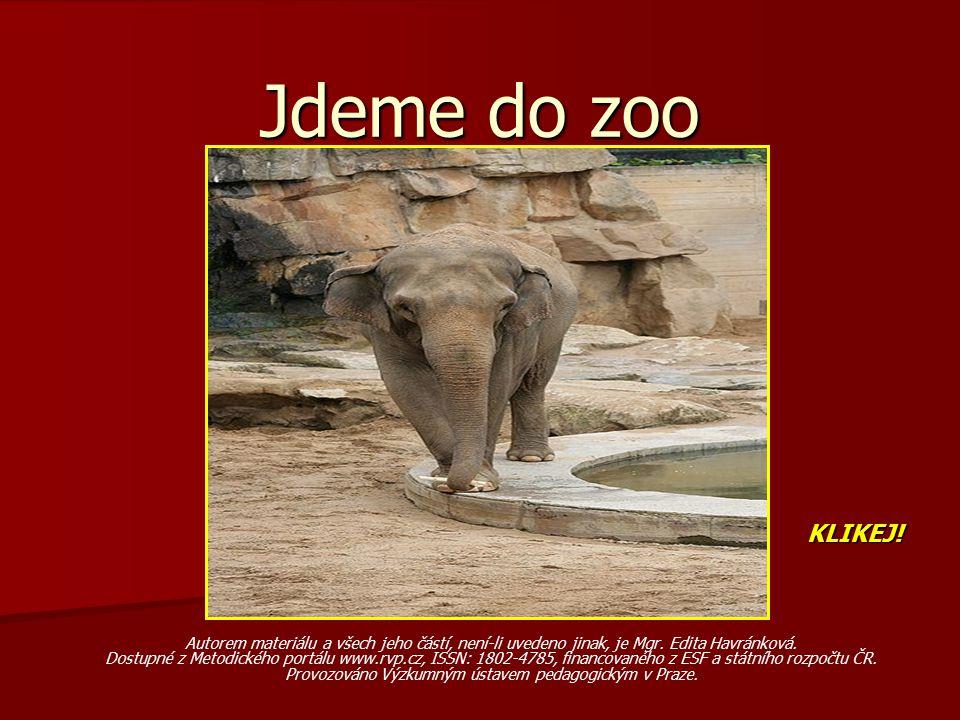Jdeme do zoo Autorem materiálu a všech jeho částí, není-li uvedeno jinak, je Mgr.