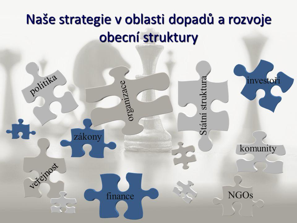 Naše strategie v oblasti dopadů a rozvoje obecní struktury politika zákony finance veřejnost Státní struktura NGOs organizace komunity investoři