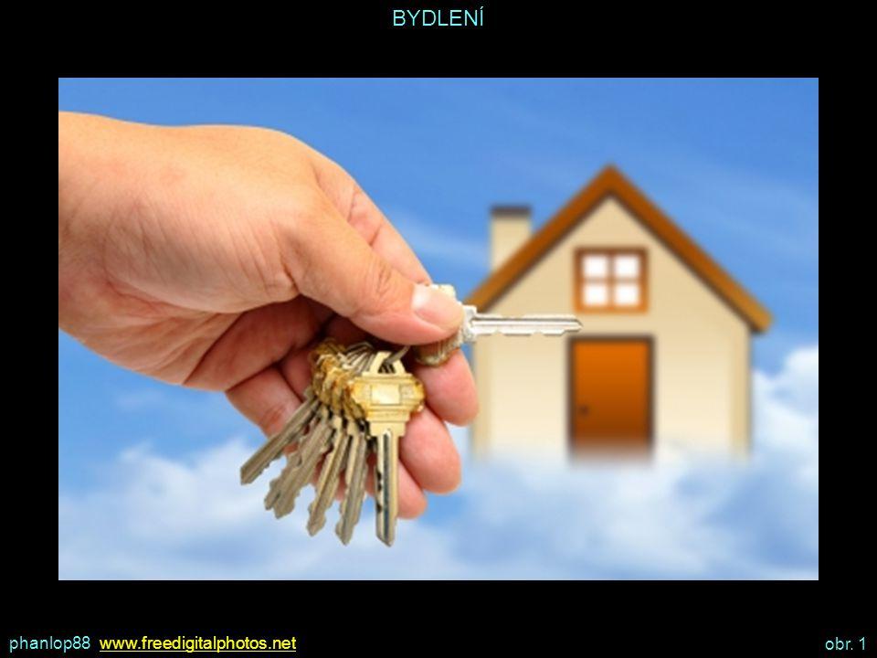BYDLENÍ BYDLENÍ VE VLASTNÍM DOMĚ VÝHODY: naprostá volnost v otázkách zařízení, výzdoby, stavebních úprav, materiálů,… lze prodat nebo pronajmout lze darovat nebo zapůjčit lze využít k podnikání NEVÝHODY: nutno nejprve získat – koupit, zdědit,… o dům nebo byt je potřeba se starat – investovat do oprav nutno platit daň z nemovitosti nutno zajistit včasné placení všech služeb – plyn, voda, elektřina odpovědnost za škodu způsobenou jiným osobám vlivem špatného stavu nemovitosti a jejího příslušenství