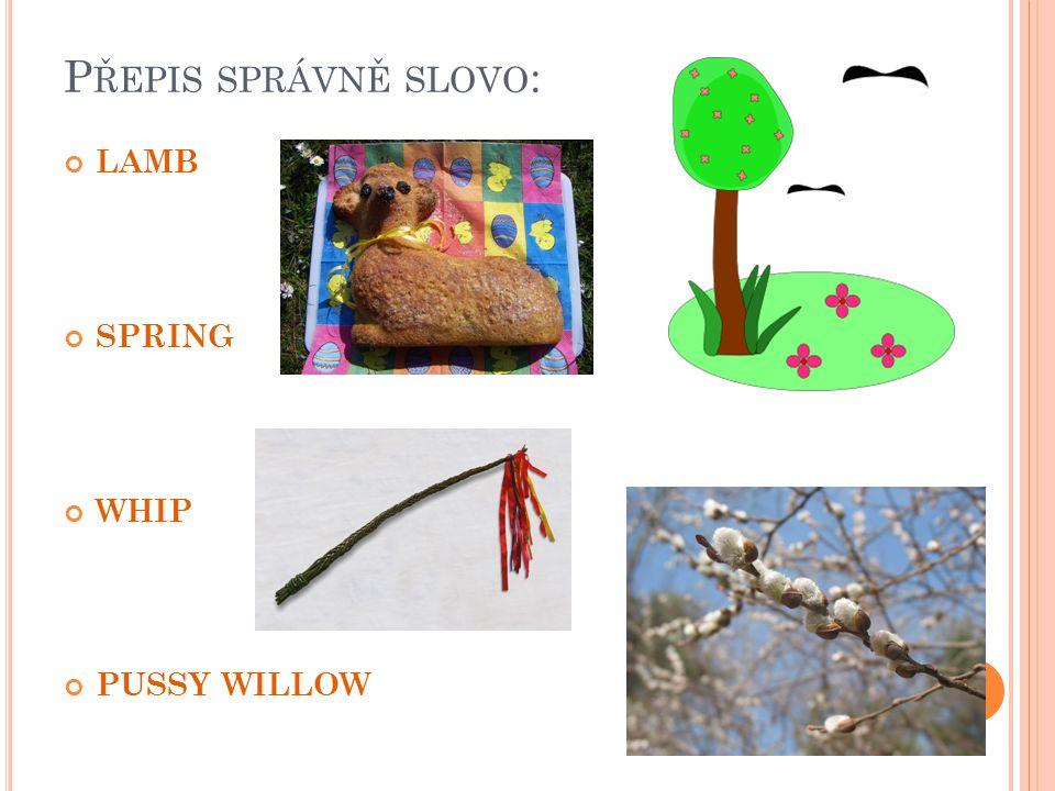 P ŘEPIS SPRÁVNĚ SLOVO : LAMB SPRING WHIP PUSSY WILLOW