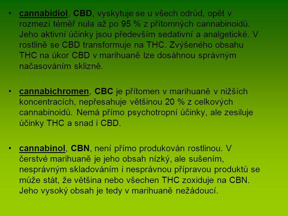 cannabidiol, CBD, vyskytuje se u všech odrůd, opět v rozmezí téměř nula až po 95 % z přítomných cannabinoidů. Jeho aktivní účinky jsou především sedat