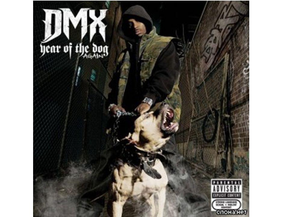DMX byl také několikrát zatčen.V roce 1999 byl zatčen v Teaneck,New Jersey,protože u něho policie našla pistol a crack.V červnu 2004,DMX a jeho kámoš byli zatčení na letištním parkovišti v NY,pokoušeli se ukrást auto federálního agenta.V dubnu 2005 byl DMX zatčen v Bronxu,musel odevzdat licenci protože jeho auto narazilo do policejní hlídky.