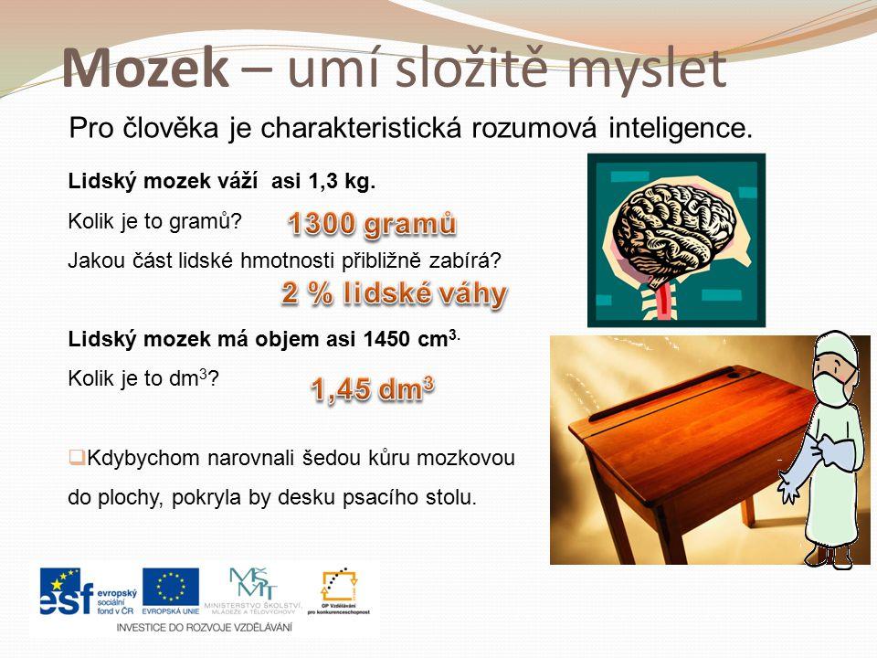 Mozek – umí složitě myslet Lidský mozek váží asi 1,3 kg.