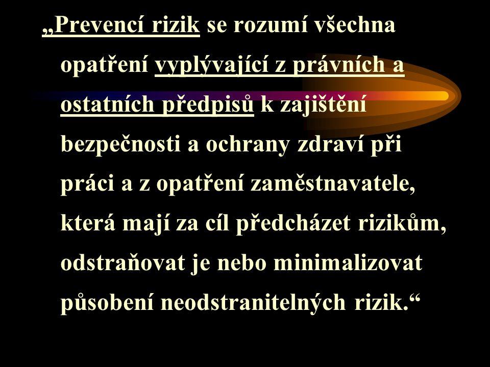 Prevence rizik Jsou tedy opatření s cílem: 1.Předcházet rizikům 2.Odstraňovat rizika 3.Minimalizovat neodstranitelná