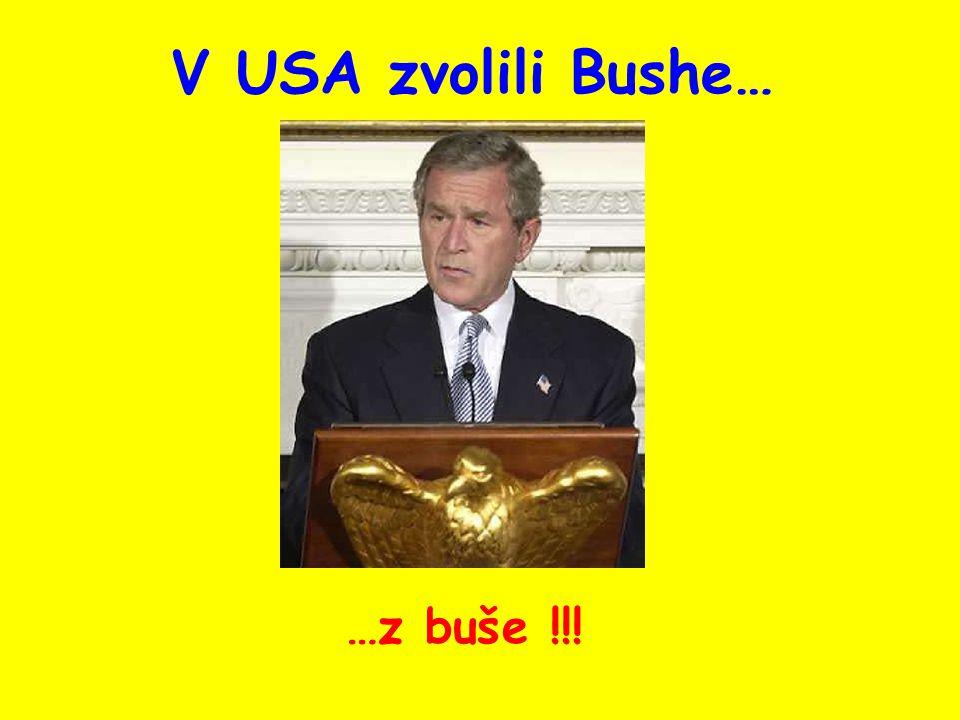 V USA zvolili Bushe… …z buše !!!