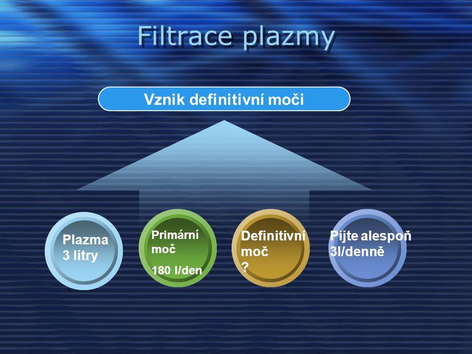 Filtrace plazmy Vznik definitivní moči Plazma 3 litry Definitivní moč .