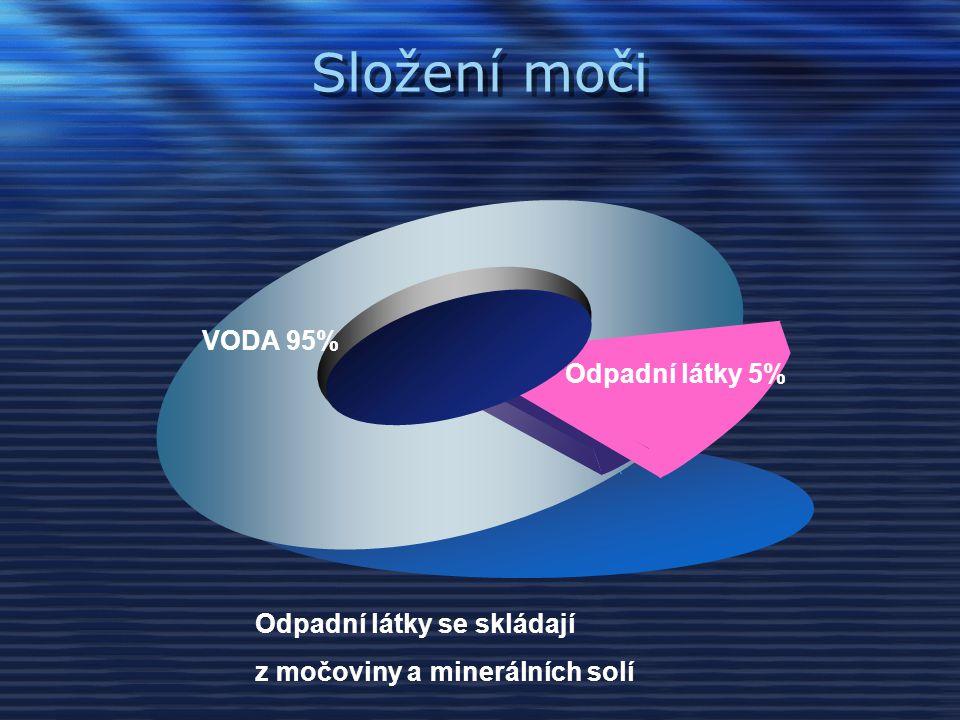 Složení moči VODA 95% Odpadní látky 5% Odpadní látky se skládají z močoviny a minerálních solí