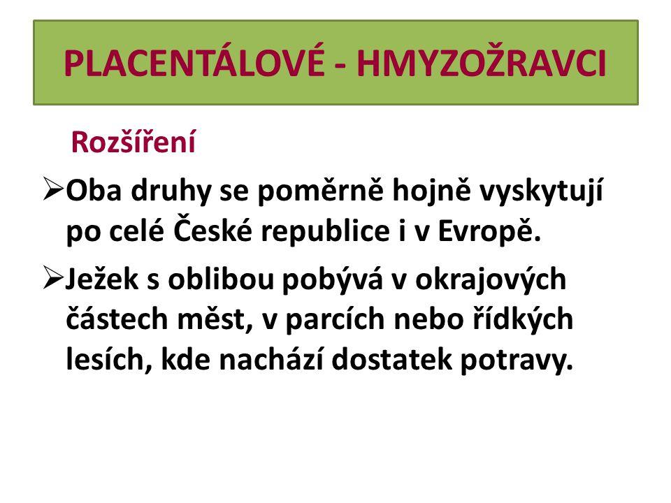 PLACENTÁLOVÉ - HMYZOŽRAVCI Rozšíření  Oba druhy se poměrně hojně vyskytují po celé České republice i v Evropě.  Ježek s oblibou pobývá v okrajových