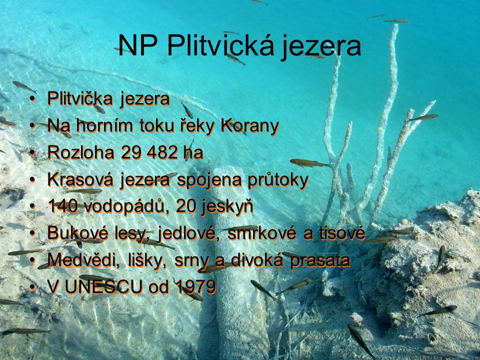 NP Plitvická jezera Plitvička jezera Na horním toku řeky Korany Rozloha 29 482 ha Krasová jezera spojena průtoky 140 vodopádů, 20 jeskyň Bukové lesy,