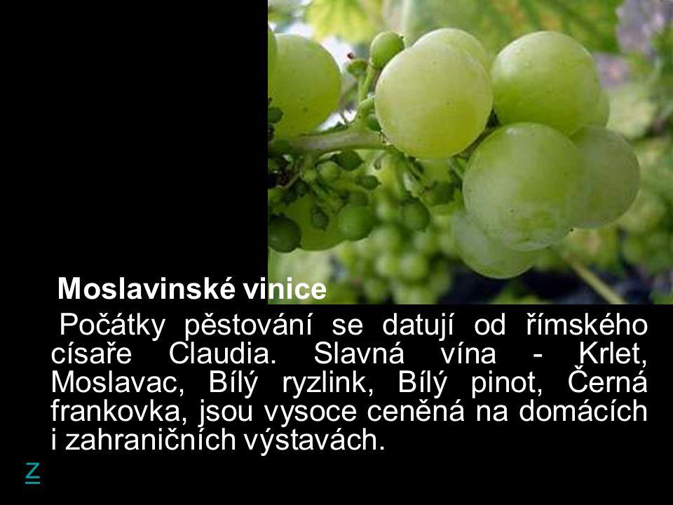Moslavinské vinice Počátky pěstování se datují od římského císaře Claudia. Slavná vína - Krlet, Moslavac, Bílý ryzlink, Bílý pinot, Černá frankovka, j