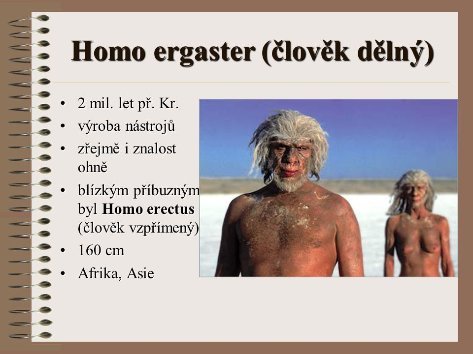 Homo ergaster (člověk dělný) 2 mil. let př. Kr.2 mil. let př. Kr. výroba nástrojůvýroba nástrojů zřejmě i znalost ohnězřejmě i znalost ohně blízkým př