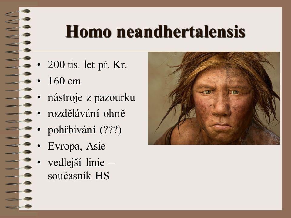 Homo neandhertalensis 200 tis. let př. Kr.200 tis. let př. Kr. 160 cm160 cm nástroje z pazourkunástroje z pazourku rozdělávání ohněrozdělávání ohně po