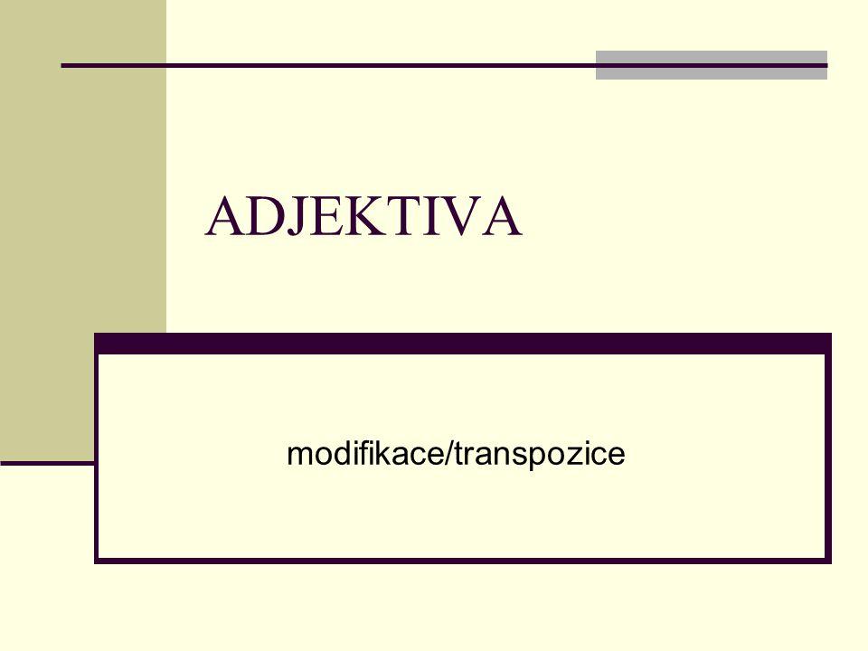 ADJEKTIVA modifikace/transpozice