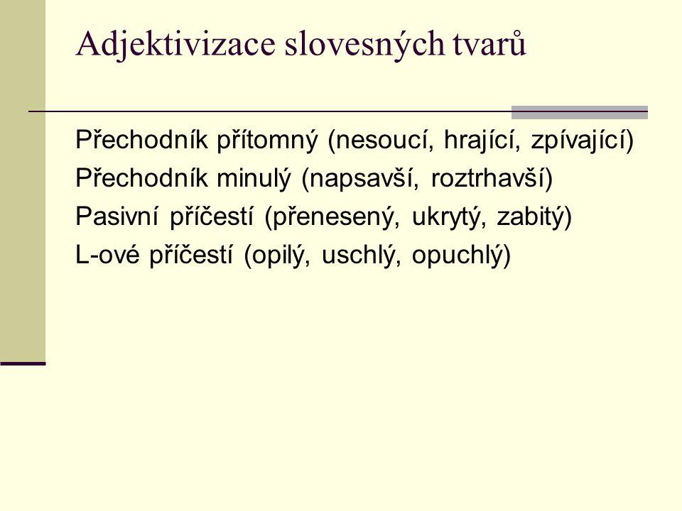 Adjektivizace slovesných tvarů Přechodník přítomný (nesoucí, hrající, zpívající) Přechodník minulý (napsavší, roztrhavší) Pasivní příčestí (přenesený,