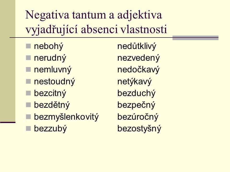 Negativa tantum a adjektiva vyjadřující absenci vlastnosti nebohýnedůtklivý nerudnýnezvedený nemluvnýnedočkavý nestoudnýnetýkavý bezcitnýbezduchý bezd