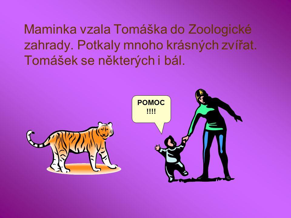 Maminka vzala Tomáška do Zoologické zahrady. Potkaly mnoho krásných zvířat.