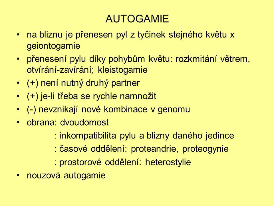 ALLOGAMIE na bliznu je přenesen pyl z tyčinek jiného jedince (-) potřeba druhého jedince -> zajištění přenosu pylu (+) vznik nových kombinací v genomu anemogamie, zoogamie, hydrogamie