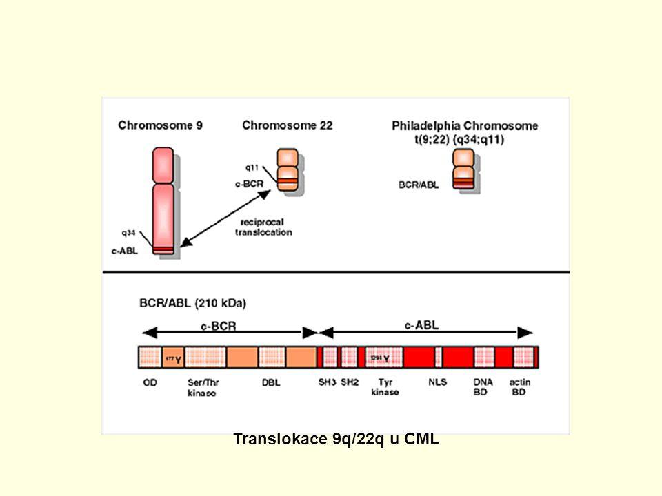 Translokace 9q/22q u CML