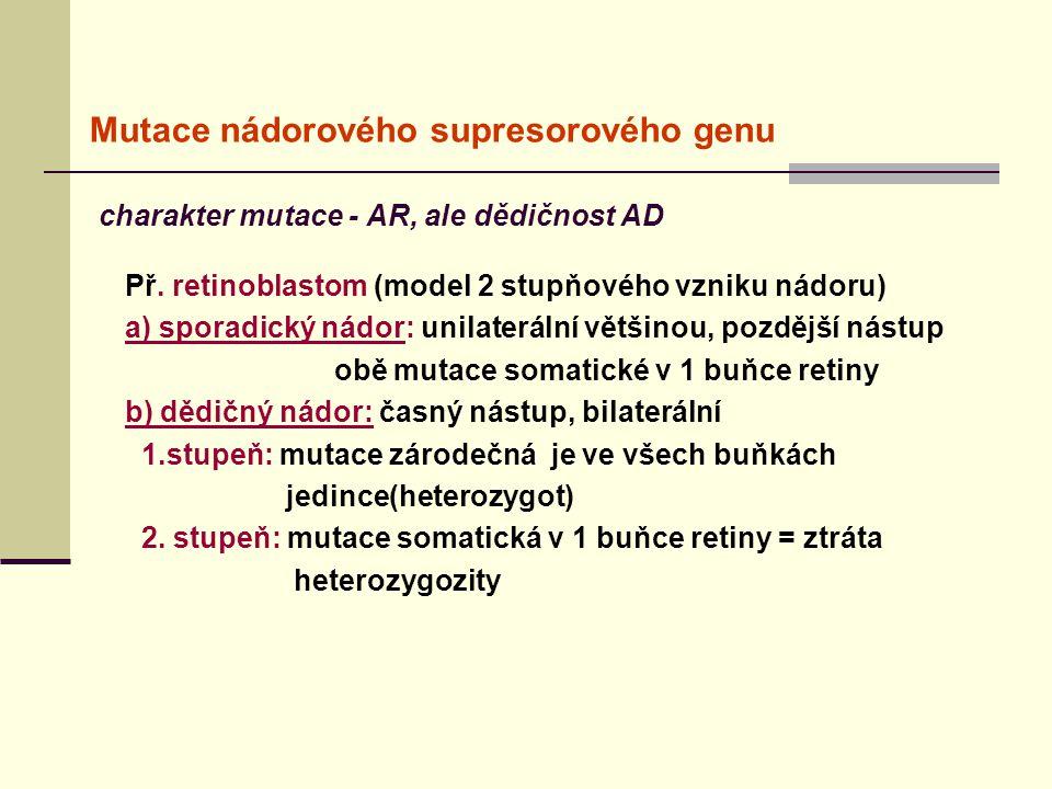 Mutace nádorového supresorového genu charakter mutace - AR, ale dědičnost AD Př. retinoblastom (model 2 stupňového vzniku nádoru) a) sporadický nádor: