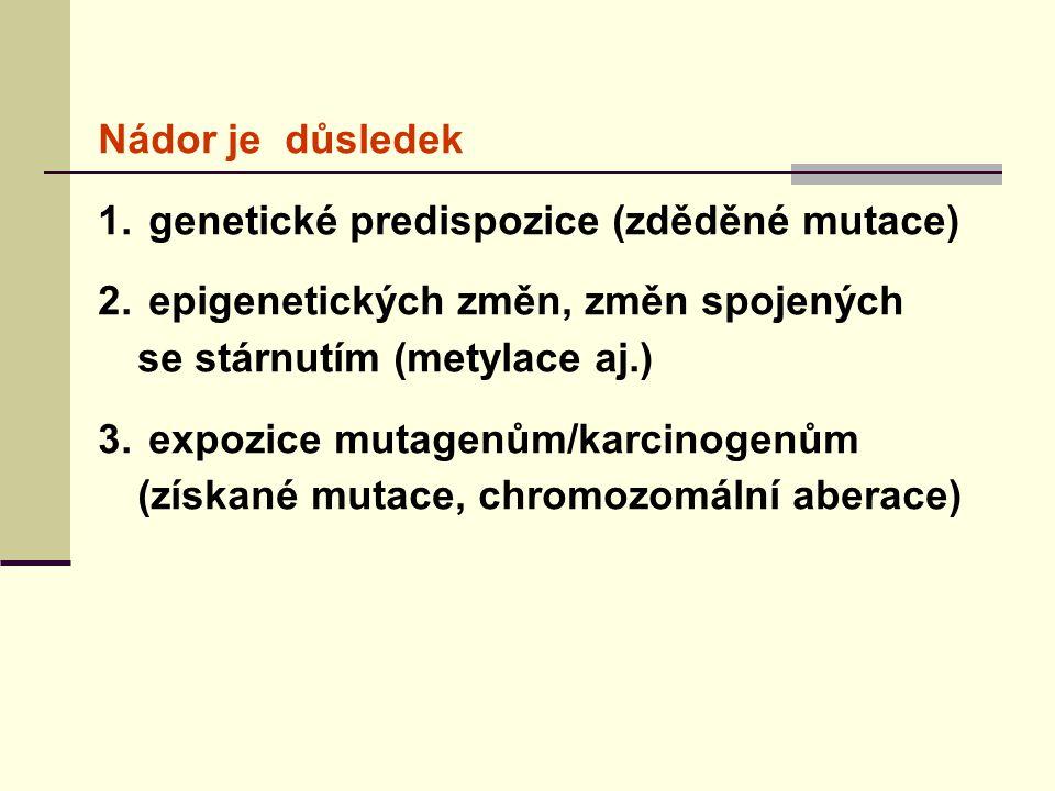 Nádor je důsledek 1. genetické predispozice (zděděné mutace) 2. epigenetických změn, změn spojených se stárnutím (metylace aj.) 3. expozice mutagenům/