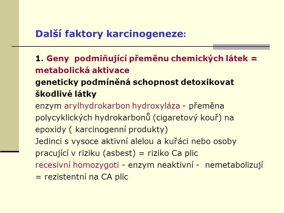 Další faktory karcinogeneze : 1.