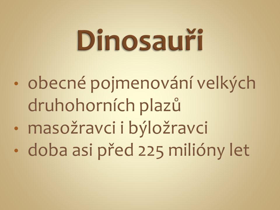 obecné pojmenování velkých druhohorních plazů masožravci i býložravci doba asi před 225 milióny let
